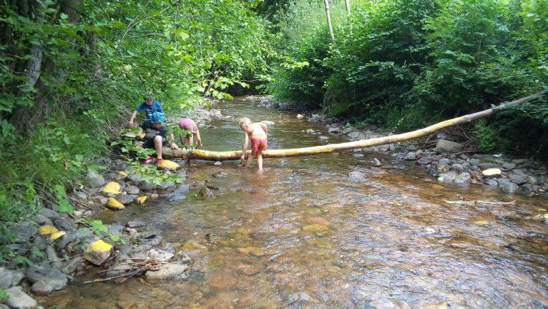 Kurs EN1908: Waldtag nur für Jungs